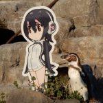 【悲報】絵に恋したペンギン、隔離されてしまうwwwwwwwwww